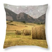 What The Hay Throw Pillow