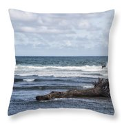 What The Sea Brought Back Throw Pillow