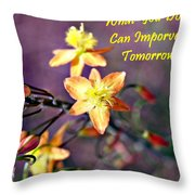 What You Do Today... Throw Pillow