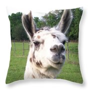 Rare Polka Dot Llama Pogo Throw Pillow