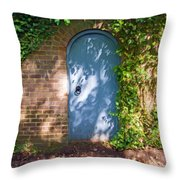 What's Behind The Gate? 3 Throw Pillow