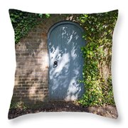 What's Behind The Gate? Throw Pillow