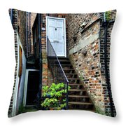 What's Behind The White Door Throw Pillow