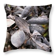 Still Life Within  Throw Pillow