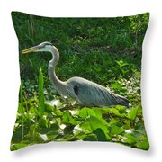Whats For Lunch Throw Pillow