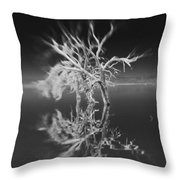 Whats Left Black And White Throw Pillow