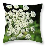 What's My Name? Throw Pillow
