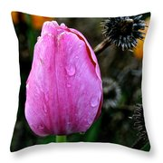What's Old And New Throw Pillow