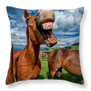 What's So Funny Throw Pillow