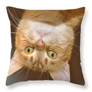 What's Up 2 Throw Pillow
