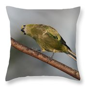 What's Up And Down Throw Pillow