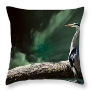 What's Up?? Throw Pillow