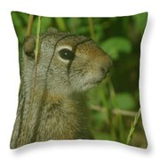 Whats Up Dude Throw Pillow