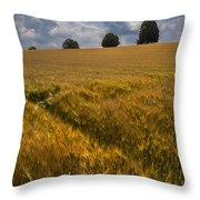 Wheat Fields Throw Pillow