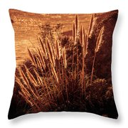 Wheat Grass Throw Pillow