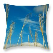 Wheat In The Sky Throw Pillow