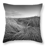Wheat Waves Throw Pillow
