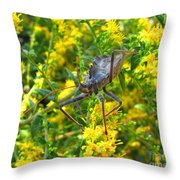 Wheel Bug  Throw Pillow