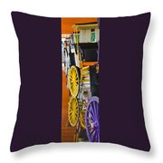 Wheel Colors Throw Pillow