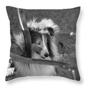 Wheeler Throw Pillow