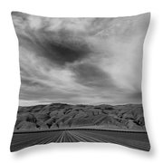 Wheeler Ridge Throw Pillow