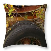 Wheels Of Autumn Throw Pillow