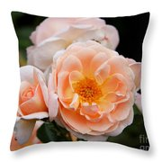 Wheeping Rose Throw Pillow