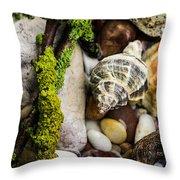 Whelk V Throw Pillow