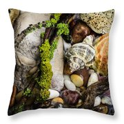 Whelk Vi Throw Pillow