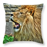 When He Speaks...they Listen...lazy Boy At The Buffalo Zoo Throw Pillow
