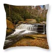 When Leaves Have Fallen Throw Pillow