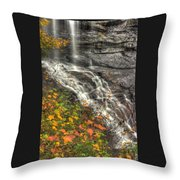 When Light And Water Falls-5a Blackwater Falls State Park Wv Autumn Mid-morning Throw Pillow