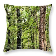 When The Forest Calls To Me Throw Pillow