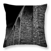 When There Were Giants Throw Pillow