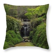 When Too Many Tears Have Fallen Throw Pillow
