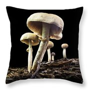 When We Sleep They Grow Throw Pillow