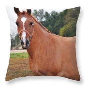 When You Look Me In The Eyes Throw Pillow