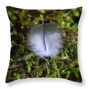 Where A Feather Finds Itself Throw Pillow