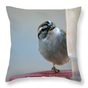 Where Did All My Food Go? Throw Pillow