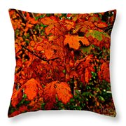 Where Has All The Red Gone - Autumn Leaves - Orange Throw Pillow