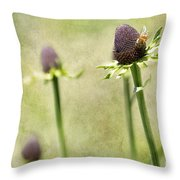 Where Have All My Petals Gone Throw Pillow