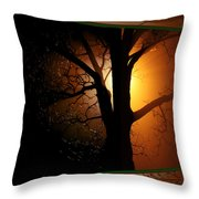 Where Have All The Flowers Gone-featured In Harmony And Happiness-naturephoto-visions Of The Night  Throw Pillow