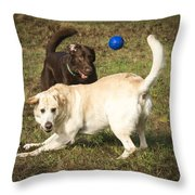 Where Is It Throw Pillow