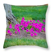 Where Petunia Grows Throw Pillow
