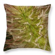 Where Red Meets Fluffy Throw Pillow