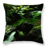 Where Solace Abounds Throw Pillow