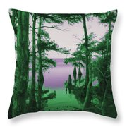 Where Swamp Meets Bay Throw Pillow