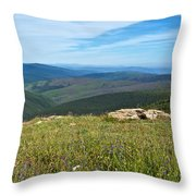 Where The Caribou Roam Near Taylor Highway-ak  Throw Pillow