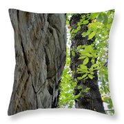 Where The Tree Meets The Stone Throw Pillow