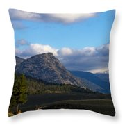 Where The Valley Leads Throw Pillow